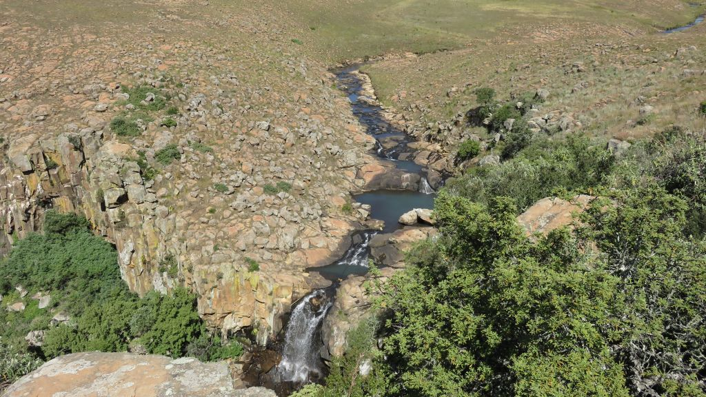Grey rhebok water fall